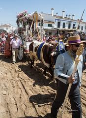 AE5D0694 (alonsoesparterofoto) Tags: caballo alma imagenes alonso rocio ermita bombo flamenca buey flauta gitana romeria campero botos tamboril bueyes rociero carriola simpecado tamborilero espartero rociera gibraleon sinpecado alonsoespartero