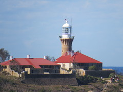 IMG_4456 Barrenjoey Lighthouse. (Boat bloke) Tags: beach canon coast waterfront sydney australia palm barrenjoey sx50hs