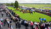 """Curragh 9.8.2015 024 • <a style=""""font-size:0.8em;"""" href=""""https://www.flickr.com/photos/75346790@N07/20426386376/"""" target=""""_blank"""">View on Flickr</a>"""