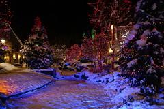 'tis the season ... (geraldineh.dutilly) Tags: christmas lights xmas navidad luces noche night whistler canada