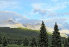 An Exercise in Pastels (Patricia Henschen) Tags: moosemeadows banffnationalpark banff nationalpark parkscanada park parcs parks alberta canada trees clouds boreal forest rockies canadian northern canadianrockies bow bowvalleyparkway roadside mountains mountain