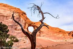 Ear of the Wind, Monument Valley Navajo Tribal Park (Mario Dennis) Tags: earofthewind monumentvalley navajotribalpark