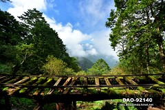 DAO-92140 寧靜,芬多精,森林浴,負離子,舒壓,呼吸,健康,舒適,空氣品質,見晴懷古步道,步道,森林鐵路,鐵道,鐵路,鐵軌,高山,山,樹木,樹林,森林,太平山森林遊樂區,太平山國家森林遊樂區,宜蘭太平山,太平山,宜蘭旅遊景點,宜蘭縣,大同鄉 (盈盈設計影像網 0932046950) Tags: 寧靜 芬多精 森林浴 負離子 舒壓 呼吸 健康 舒適 空氣品質 見晴懷古步道 步道 森林鐵路 鐵道 鐵路 鐵軌 高山 山 樹木 樹林 森林 太平山森林遊樂區 太平山國家森林遊樂區 宜蘭太平山 太平山 宜蘭旅遊景點 宜蘭縣 大同鄉 橫式 亞洲 台灣 taiwan 台灣圖片 台灣旅遊 台灣景點 數位攝影 風景 攝影 圖庫 圖片 圖像 戶外 觀光景點 旅遊 觀光 休閒 地標
