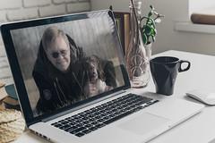 04/52 ZigZag 2017 (Flemming Andersen) Tags: jelling regionsyddanmark denmark dk 52weeksfordogs pc computer laptop selfie coffe vase green dog sunglasses