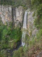 Purling Brook Falls P1020282 (benhosg) Tags: springbrooknationalpark waterfall