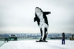 Orca on the Snow (どこでもいっしょ) Tags: digitalorca vancouver douglascoupland snow vancouverconventioncentre panasonicdmczs100