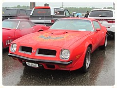 Pontiac Firebird Trans Am (v8dub) Tags: auto old classic car schweiz switzerland am automobile gm suisse general muscle live automotive voiture motors pony american firebird oldtimer pontiac trans oldcar collector youngtimer wagen luterbach pkw klassik worldcars
