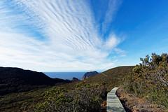 20150719-05-Boardwalk beneath Perdition Ponds (Roger T Wong) Tags: winter trek outdoors nationalpark path walk australia hike tasmania boardwalk np bushwalk tramp 2015 tasmanpeninsula capepillar sony1635 rogertwong sel1635z sonya7ii sonyilce7m2 sonyalpha7ii sonyfe1635mmf4zaosscarlzeissvariotessart