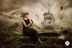 Alone with the Bees (story-art) Tags: musician mist bird art composite digital forest photoshop photography artist bees surreal jazz manipulation cage bee magical photoshopping compositing