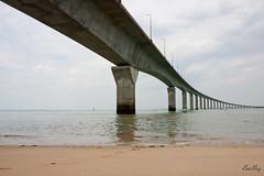 Pont de l'île de Ré (Juju de Tonnay) Tags: ocean bridge sea mer france construction pont ré charente île atlantique océan ingénieur charentemaritime ouvrage