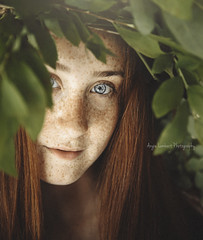 Maddy Revisited (Angie Lambert) Tags: learningportraiture portraitphotography portrait naturallightportraits organic frecklesfordays freckles gorgeousgirl blueeyes