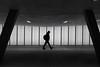 (Toni_V) Tags: m2402496 rangefinder messsucher leica leicam mp typ240 35lux 35mmf14asph 35mmf14asphfle summiluxm bahnhof station oerlikon zurich zürich sbb cff ffs unterführung architecture architektur schwarzweiss blackwhite bw monochrome sep2 silverefexpro2 niksoftware motion blur street concrete sichtbeton switzerland schweiz suisse svizzera svizra europe ©toniv 2016 161222 symmetry