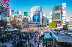 Shibuya square life (Phg Voyager) Tags: shibuya japan tokyo asia leica mp 18mm urban color trendy crowdy people photography phgvoyager sunny blue fun