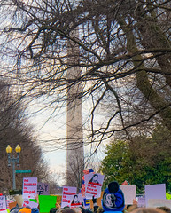2017.01.29 No Muslim Ban Protest, Washington, DC USA 00288