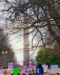 2017.01.29 No Muslim Ban Protest, Washington, DC USA 00288