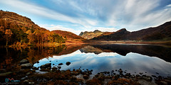 Blea Tarn Golden Light (Dave Massey Photography) Tags: bleatarn lakedistrict langdalepikes sidepike outdoor mountains mountainside panorama autumn fall