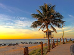 The sun sets over Rainbow Bay,. Queensland, Australia (Deb Jones1) Tags: palmtrees coolangatta beauty placestravel australian goldcoast rainbowbay queensland ocean sunrise sunset beaches beach australia