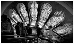 Stained glass at QVB (missgeok) Tags: qvb queenvictoriabuilding sydney australia bnw architecture victorian grand building shoppingcentre monochrome blackandwhite georgemcrae 1898 staircase stainedglass windowglass glorious lighting people candid shoppingarcade beautiful photoblackandwhite nocolour pov window perspective viewofangle composition framing