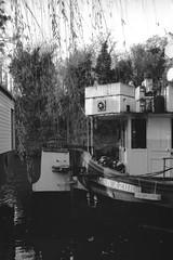 Bec d'Azur (•Nicolas•) Tags: parc boat péniche park river rivière seine nb bw fomaspan 100iso film analog vintage tree arbre sky ciel nicolasthomas
