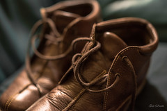 A Good Pair of Shoes (gwshamb) Tags: stilllife bokeh 50mm d750 laces feet leather walking zeissmilvus f14 nikon protection shoes 52of2017