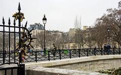 Paris , la ville de l'amour! (miriam ulivi) Tags: miriamulivi nikond7200 france paris parigi ponte bridge people lucchettidamore lovepadlocks lampioni gabbiano seagull streetlamps street