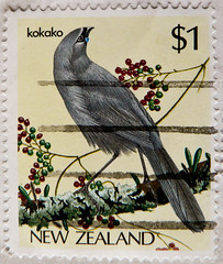 great stamp New Zealand 1$ Kokako (Callaeas cinereus, Kōkako, 垂耳鸦属, Lappenkrähe, ハシブトホオダレムクドリ, Кокако, Kokakor, Glaucope cendré ; bird Vogel oiseau 鸟 pájaro) 邮票 新西兰 selyo Niyusiland 切手 ニュージーランド perangko Selandia Baru bolli Nuova Zelanda nouvelle-zélande (stampolina, thx ! :)) Tags: newzealand neuseeland stamps timbre postes postestimbre sellos sello selo selos francobolli francobollo bollo bolli mapka marka postzegel briefmarken briefmarke postage porto franco frimaerke antspaudai frimerker znaczki znamk timbres pulları แสตมป์ markas commonwealth commonwealthofnations 切手 mail timbru postapulu pulu bird vogel birds oiseau 1 kokako callaeascinereus kōkako 垂耳鸦属 lappenkrähe кокако kokakor glaucopecendré ハシブトホオダレムクドリ grau grey gris cinza グレー 灰色 szary серый grå grigio 회색 رمادي भूरा gri szürke สีเทา сив kelabu siva γκρί אפור one