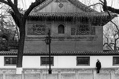 Against the wall (Go-tea 郭天) Tags: jinanshi shandongsheng chine cn street urban city outside outdoor people bw bnw black white blackwhite blackandwhite monochrome asia asian china chinese shandong canon eos 100d 24mm prime jinan baoutu springs winter cold young lady woman girl alone stand old traditional building house history historical historic trees lantern holes windows perimeter hat coat lonely waiting smile smiling standing against wall beauty beautiful