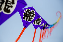 kites on a string (Deadsteve) Tags: summer sky kite color asian fly flying rainbow wind flight string