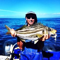 Jason Moyce with a Tasmanian Trumpter. Pretty good eating he reckons. #stormlinegear #fishing #australia #tasmania
