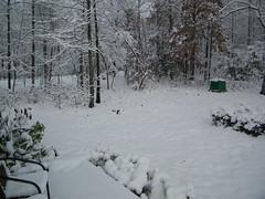 Salisbury Snow 2010