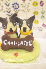 Your dog figure cake (INUGOHAN_WORLD) Tags: food dog cooking dogs cake recipe poodle foodart dogcake cakeclass dogsweets dogrecipe figurecake dogrecipes