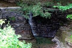 Stair Step (pecooper98362) Tags: newyork waterfall valley vestal stairpark limestonesteps fullerhollowcreek longerdrop