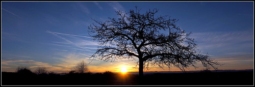 - 8.12.2016 und immer wieder geht die Sonne auf -
