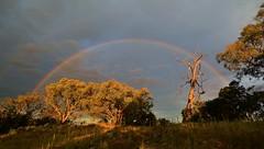 Rainbow over Macarthur Hill (~Jek~) Tags: aus australia australiancapitalterritory canberra geo:lat=3540640565 geo:lon=14912361681 geotagged macarthur macarthurhill rainbow canberranaturepark wanniassahillsnaturepark