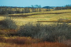 Highway 10 (bryanscott) Tags: erickson landscape manitoba canada ca
