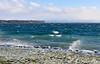 Saint-Prex glacé. (Diegojack) Tags: saintprex vaud suisse paysages hiver vent froid vagues glace