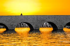 Aspire Park Pic.10 of 10 (Mohammed Qamheya) Tags: tamronsp70200f28divcusd d7000 doha qatar aspire park sunset outdoor landscape aspirezonepark silhouette