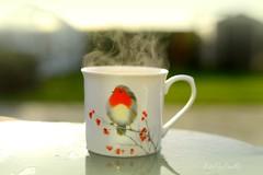 Frosty Mornings (KissThePixel) Tags: frost frosty winter tea cupoftea cup steaming steam sunshine sunlight bokeh softbokeh soft dreamy dream robin robinredbreast hot stillife nikondf sigmaart 35mm 14 artlens primelens love magic creative