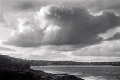 Curl Curl beach  #490 (lynnb's snaps) Tags: 120film 2014 bessa hp5 mf r4800 rodinal bw beach clouds film mediumformat v700 voigtlander bessai vaskar coast