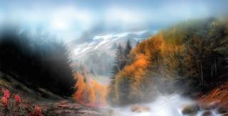 Petite brume d'automne