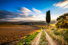 Orcia Valley, Tuscany (Stefano Caporali) Tags: tuscany pienza orciavalley countryside cypress sunset sky rural field trees italy road gladiatormovieroad clouds longexposure rollinghills whiteroad unpaved