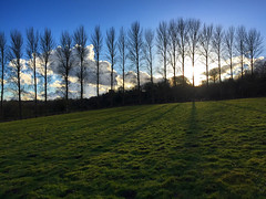 Tree Shadows (Marc Sayce) Tags: tree shadows east worldham hampshire south downs national park hangers way winter 2017 clouds
