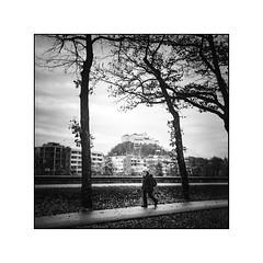 Ignaz Rieder Kai (cardijo) Tags: salzburg street people streetphotography strase rolleiflex tessar zeiss ilford fp4 rodinal nikon coolscan