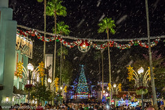 Christmas at Hollywood Studios (Disney Dan) Tags: disneyshollywoodstudios winter disney hollywoodboulevard disneyparks 2016 christmasseason december waltdisneyworld christmas dhs decembre disneyphoto disneypics disneypictures disneyworld fl florida hollywoodstudios orlando travel usa vacation wdw xmas
