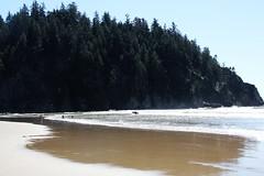 2014-04-13-Pic17-ShortSandsBeach (junglekid_jared) Tags: thebeach 2014 shortsandsbeach ©joejohnson