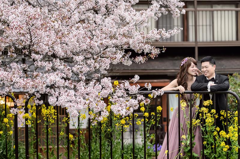 日本婚紗,京都婚紗,櫻花婚紗,新祕藝紋,cheri wedding,cheri婚紗,婚攝,cheri婚紗包套,海外婚紗,DSC_0018
