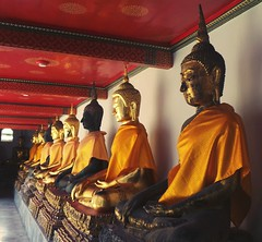Bangkok Street Photography Wat Po Buddhist Temple Thailand Travel Photography Just Looking Buddha Statue (shazell212) Tags: thailand bangkok streetphotography buddhisttemple watpo justlooking buddhastatue travelphotography