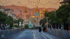 Mashhad (ghalibhasnain) Tags: iran ali reza mashhad roza ziarat nikonflickraward imamraza tour2015