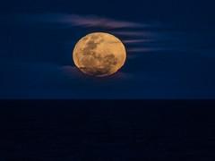 Moon Vapours (Steve Taylor (Photography)) Tags: minimalism minimalist black blue brown purple newzealand nz southisland canterbury christchurch newbrighton ocean pacific sea northnewbrighton cloud sky moon vapour