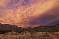Mammatus Mayhem, 7.7.16 (amyMhowardphoto) Tags: clouds cloudstructure cloudporn cloudscape mammatus sky skies nmskies dukecity dusk mountains july2016 albuquerque abq abqwx abqnws newmexico nm nmwx newmexicotrue newmexicolandscape pink pinkskies yellow mountain sandias sandiamountains